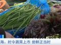 上海香椿卖到90元一斤是真的贵 香椿好吃吗有什么食疗价值